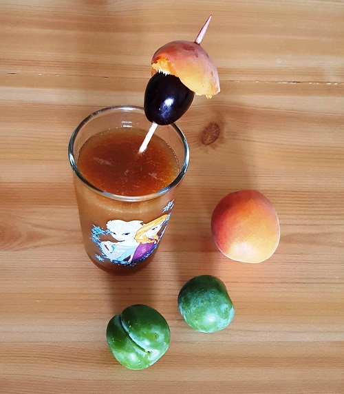 Nectar de fruit 1